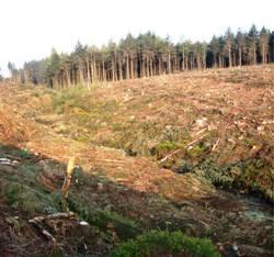 Habitat management
