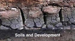 Soils and Development