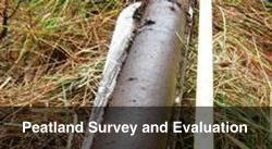 Peatland Survey and Evaluation