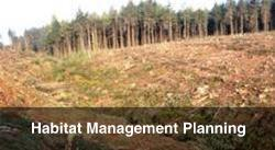 Habitat Management Planning
