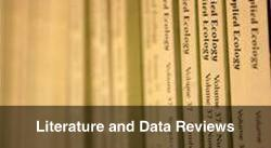 Literature and Data Reviews