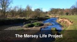 Mersey Life Project
